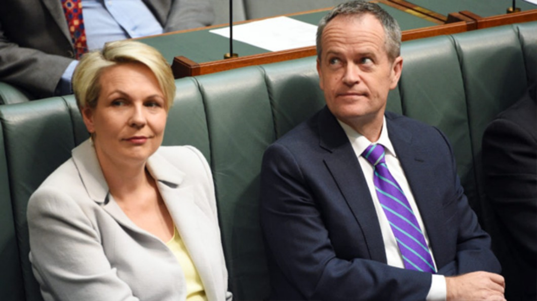 Image of Tanya Plibersek and Bill Shorten in parliament